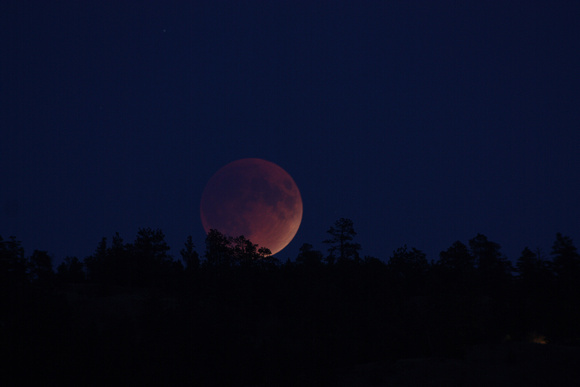 Eclipsed Moon rising (#61)