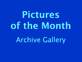 Pictures of the Month Gallery